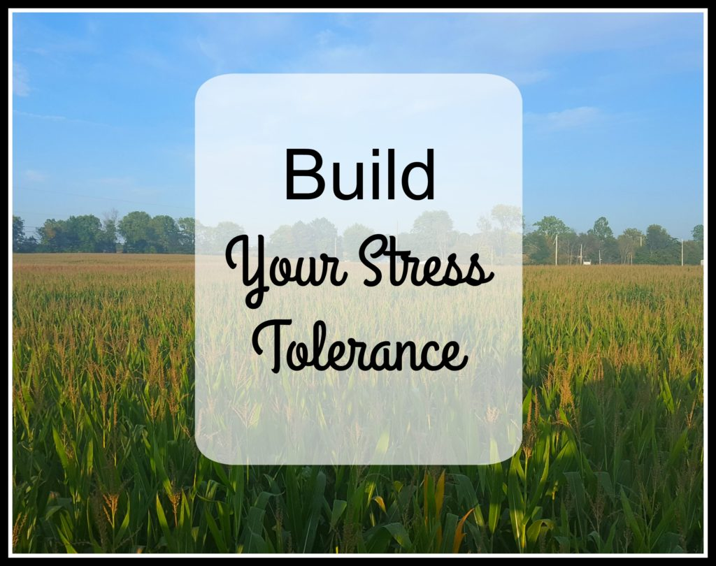 Build Your Stress Tolerance corn