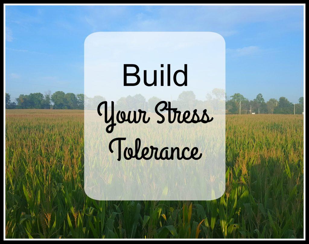 Build Your Stress Tolerance corn