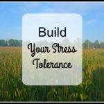Build Your Stress Tolerance