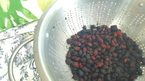 creating personal summer goals mulberries