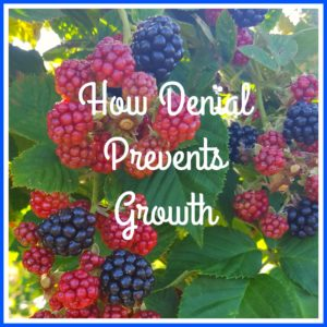 berries how denial prevents growth