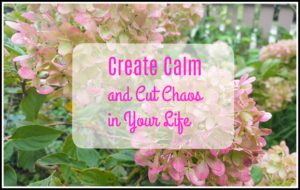 create calm and cut chaos in your life flowers