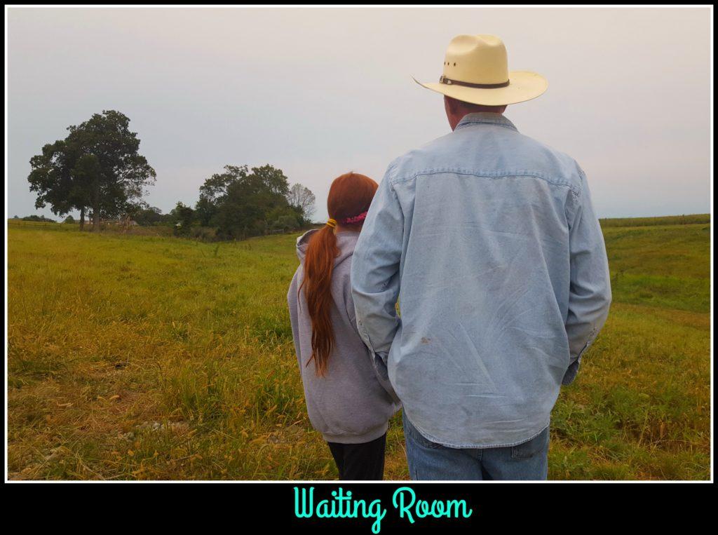Calving Season at Hickory Hollow meadow