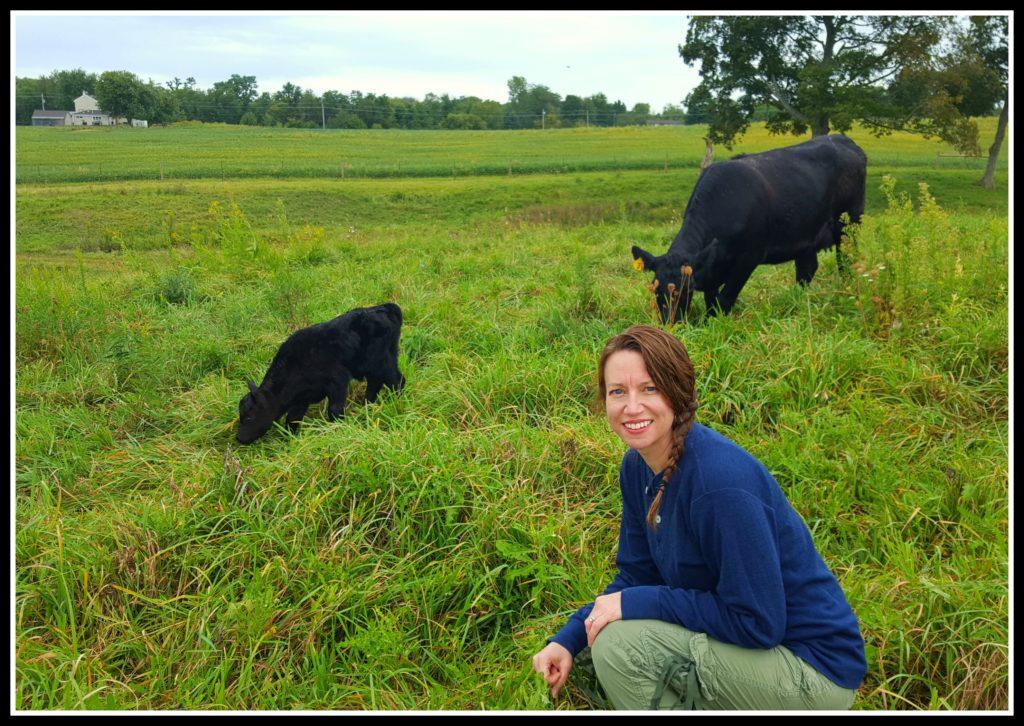 Calving Season at Hickory Hollow cow and calf
