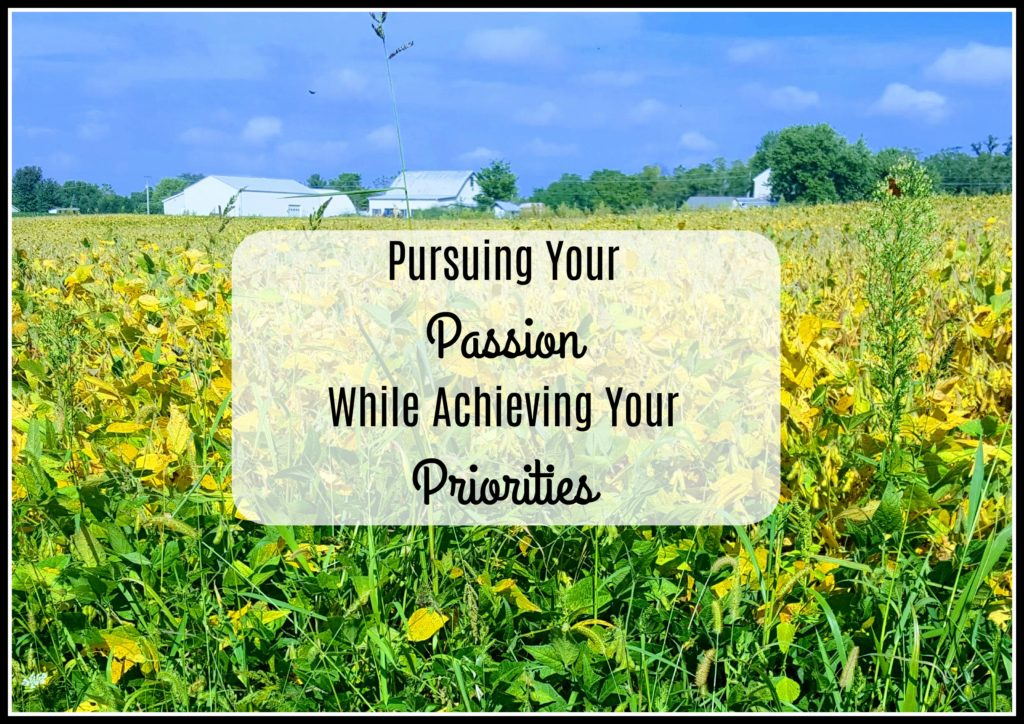 Pursuing Your Passion While Achieving Your Priorities Soy Beans
