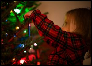 Surviving and Connecting with your Kids During Winter Break tree