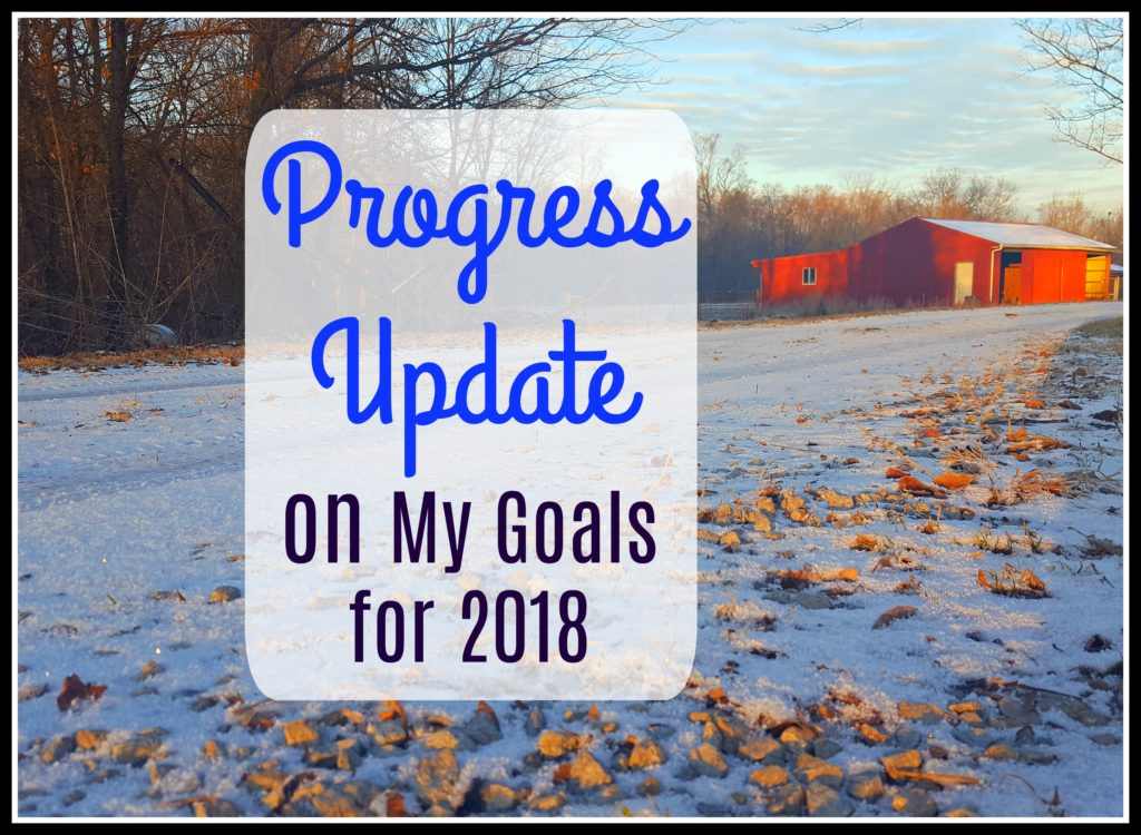 Progress Update on my goals for 2018 barn
