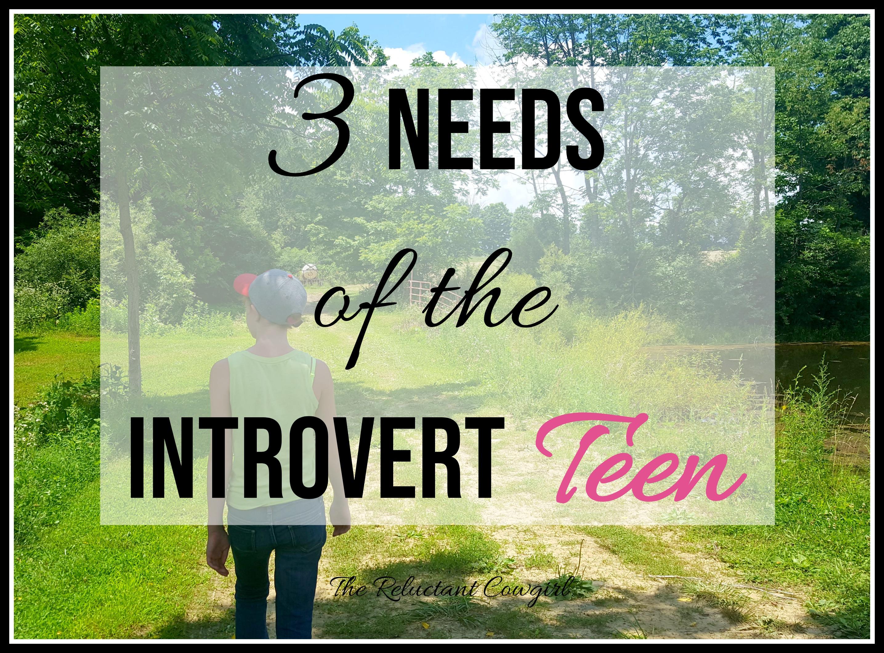 3 Needs of the Introvert Teen