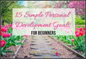 15 Simple Development Goals for beginners