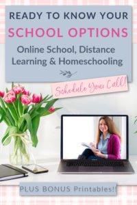 homeschool and online school consultation